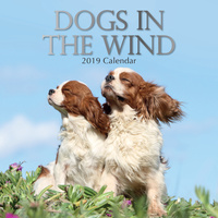 Dogs in the Wind  - 2019 Wall Calendar 16 month Premium Square 30x30cm (K)