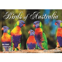 Birds of Australia - 2020 Rectangle Wall Calendar 16 Months by Bartel (A)