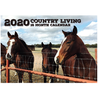 Country Living - 2020 Rectangle Wall Calendar 16 Months by Biscay (A)