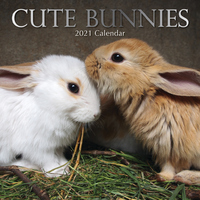 Cute Bunnies  - 2021 Square Wall Calendar 16 month by Gifted Stationery (U)