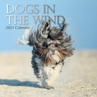 Dogs in the Wind  - 2021 Square Wall Calendar 16 month by Gifted Stationery (0)